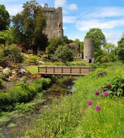 Irland Wales